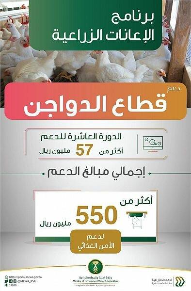 إيداع أكثر من 57 مليون ريال في حسابات مشاريع تربية الدواجن ضمن برنامج الإعانات الزراعية