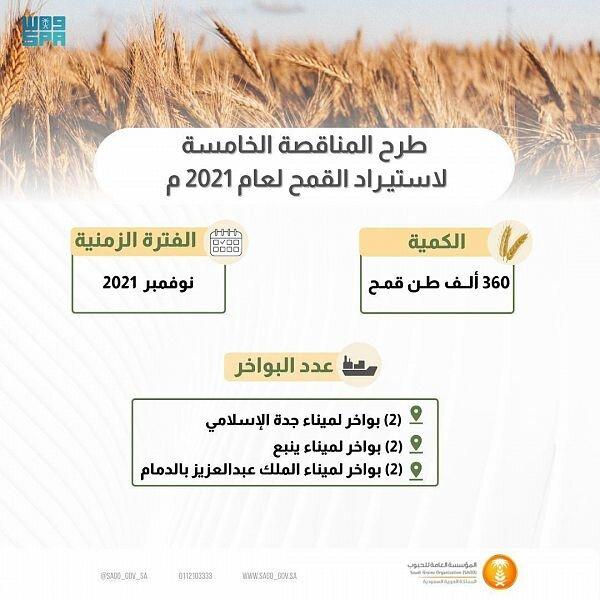 المؤسسة العامة للحبوب تطرح مناقصة لاستيراد 360 ألف طن قمح