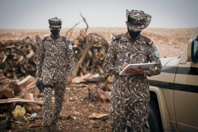 القوات الخاصة للأمن البيئي تضبط مخالفًا لنظام البيئة لاستخدامه حطبًا محليًا في أنشطة تجارية