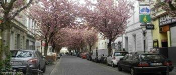 مجموعة صور لمدينة بون الألمانية