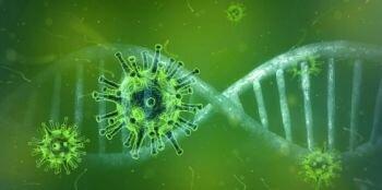 معلومات قد تفيدك عن الفيروسات التاجية ( كورونا فيروس )