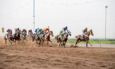 نتائج سباقات الخيل بميدان الملك سعود للفروسية بالقصيم